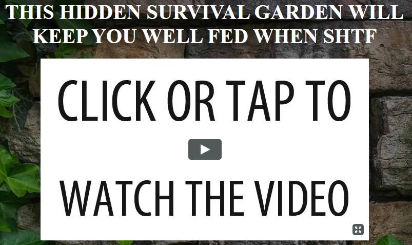 My Survival Farm Video