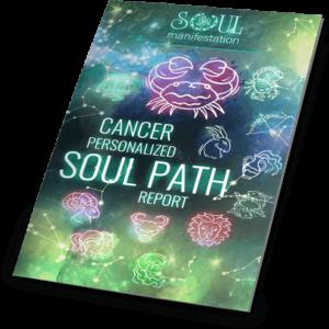 Soul Manifestation Review