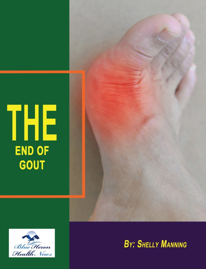 The End of Gout Book